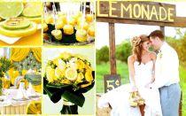 Сценарий коралловой свадьбы — свадебные советы